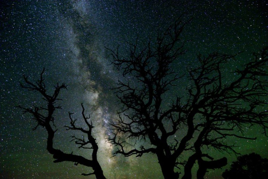 The Beauty in Darkness: Dark Sky Parks on the Rise