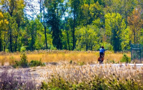 Hidden Beauty in the Concrete Jungle: Salt Lake's Jordan River Parkway