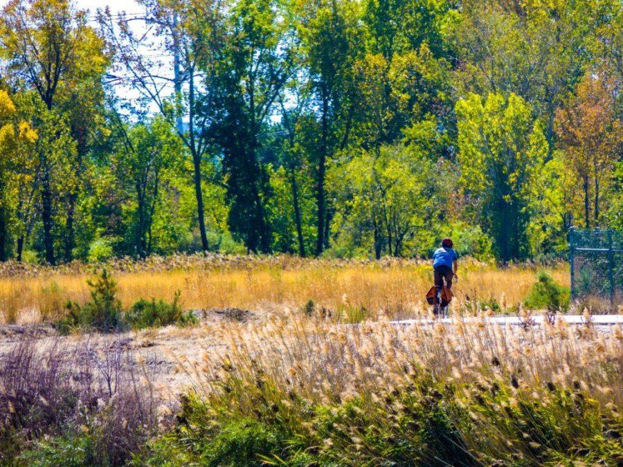 Hidden Beauty in the Concrete Jungle: Salt Lake's Jordan River Parkway