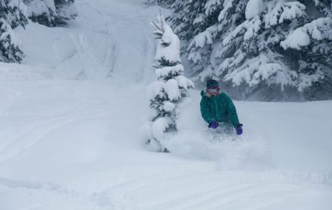 Insider's guide to Alta