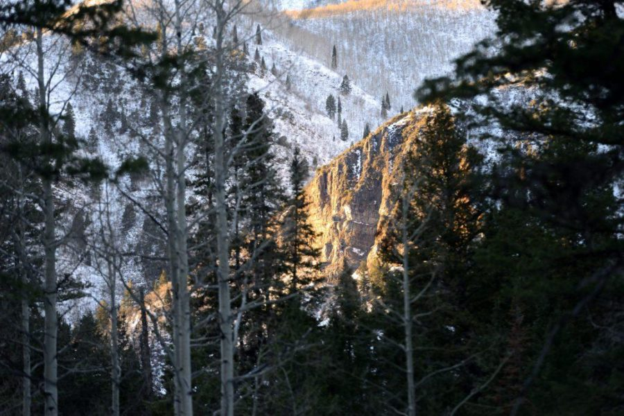 How to: Start snowshoeing
