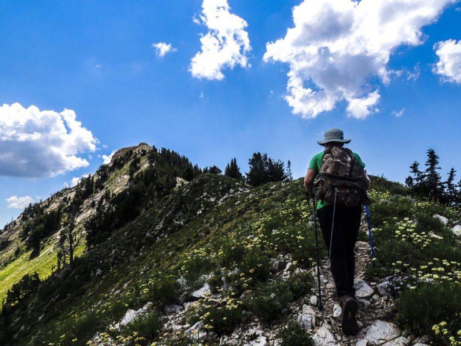 Peakbagger's Double Traverse: Mount Raymond and Gobbler's Knob