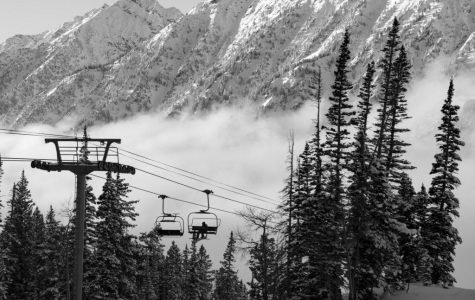 Snowbird Makes Most of One-Star Review