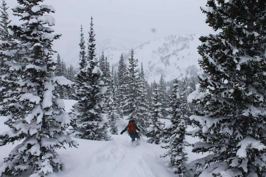 Learning+to+Be+in+the+Backcountry