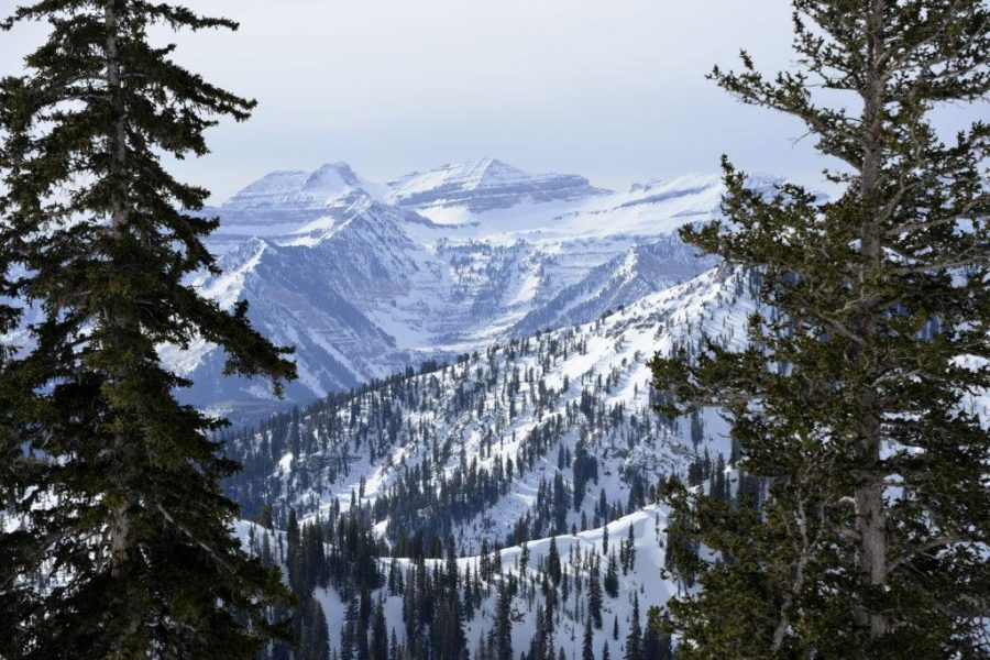Skiing+at+Snowbird+with+Polly+Creveling