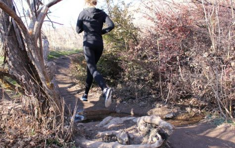 Getting Into Trail Running
