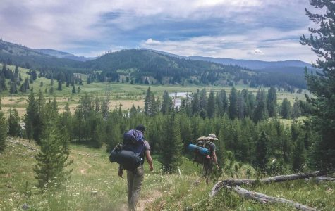 A backpacking trail in the southern territory of Yellowstone National Park