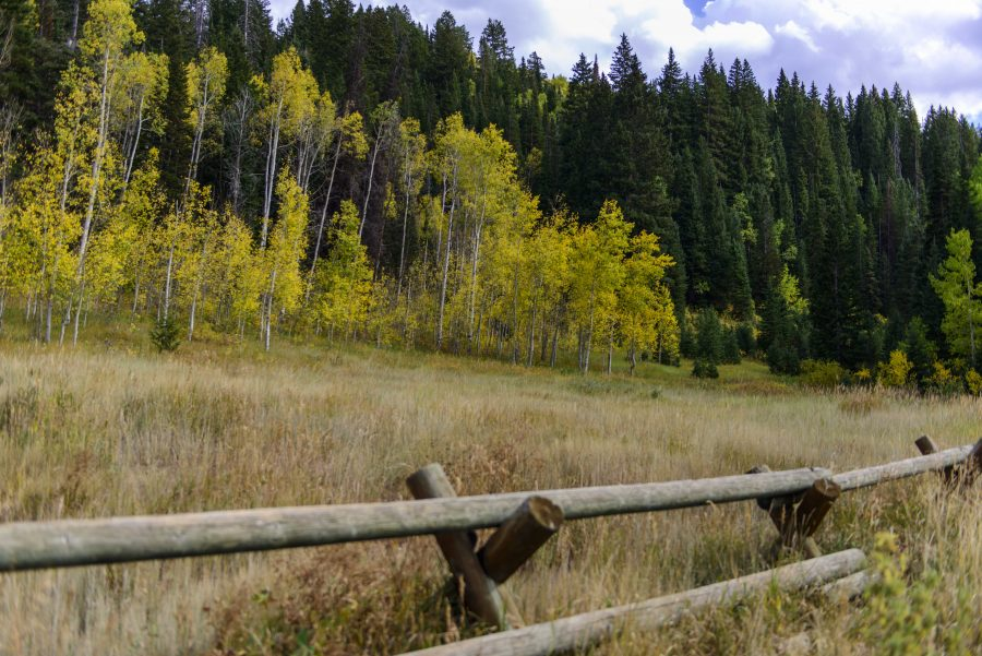 Fall_Wasatch_22