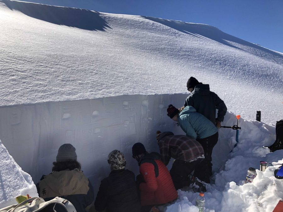 Students learning about avalanche safety.