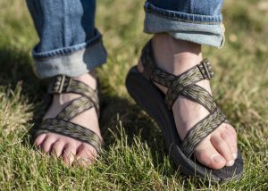Satire: The War to End All Wars, Chacos Versus Tevas
