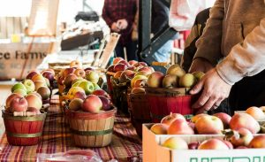 Local Farmers Market Takes COVID-19 Protocols Head On
