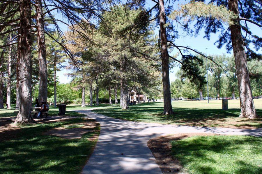 Run Local: A Review of Three Salt Lake Park Routes
